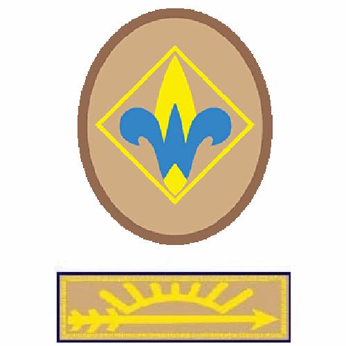Webelos + Arrow of Light emblem